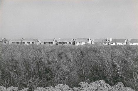 The Irvine House